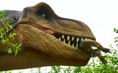 Mrs. Raffasaurus Rex and the Time I said