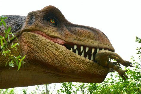 "Mrs. Raffasaurus Rex and the Time I said ""Bread"""